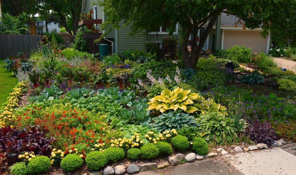 Rainbow Garden Design Organic