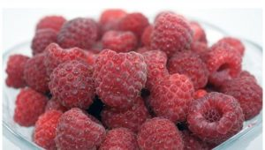 Joan J Raspberries without text