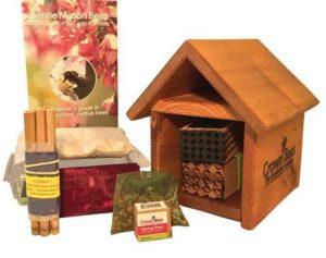 Beeworks Cabin Kit