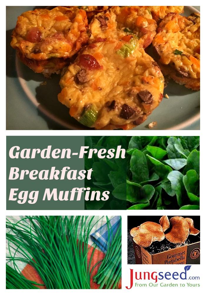 Easy Garden-Fresh Breakfast Egg Muffins | blog.jungseed.com