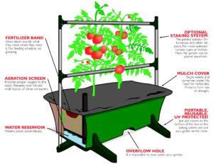 Earthbox Garden Kit