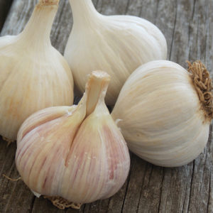 Hardneck garlic on a wooden table