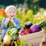 Cute little boy holding a bunch of fresh organic carrots in domestic garden.