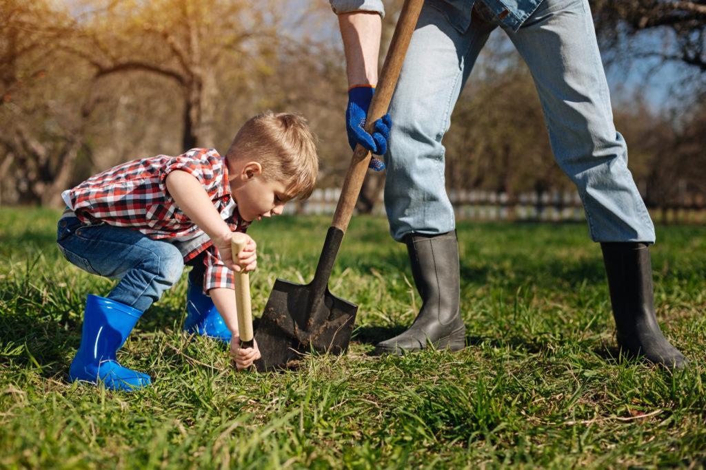 Un niño cavando un hoyo para un árbol con su padre.