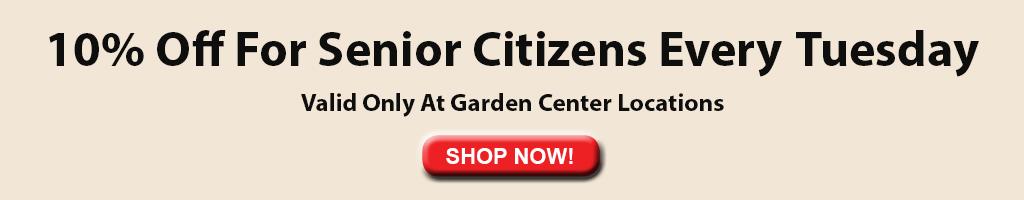 10% for senior citizens on tuesdays