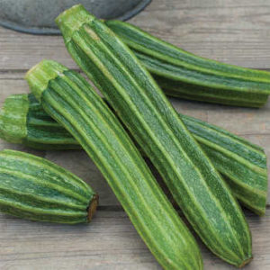 Zucchini on a table