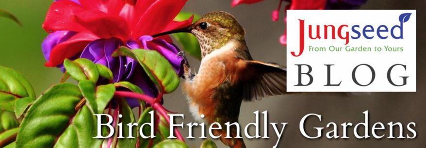 Bird Garden Article Ad