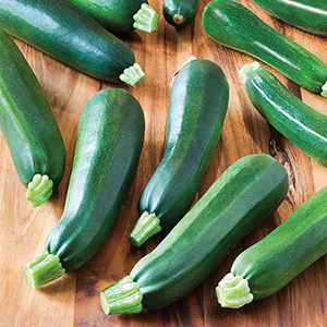 heirloom zucchini