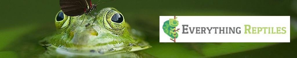 Bandera de todos los reptiles