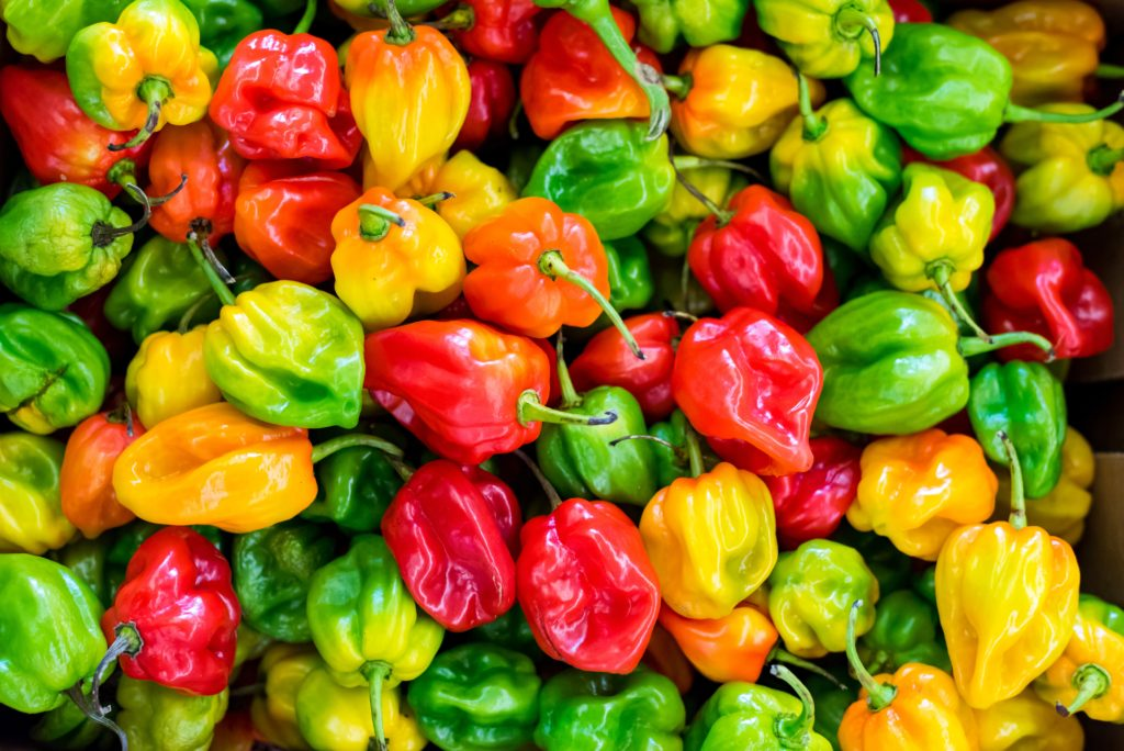 17 Flavorful Pepper Types