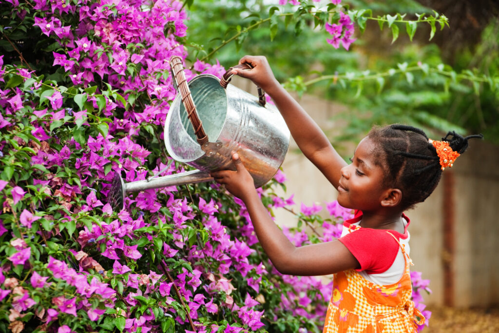 A young girl watering purple flowers