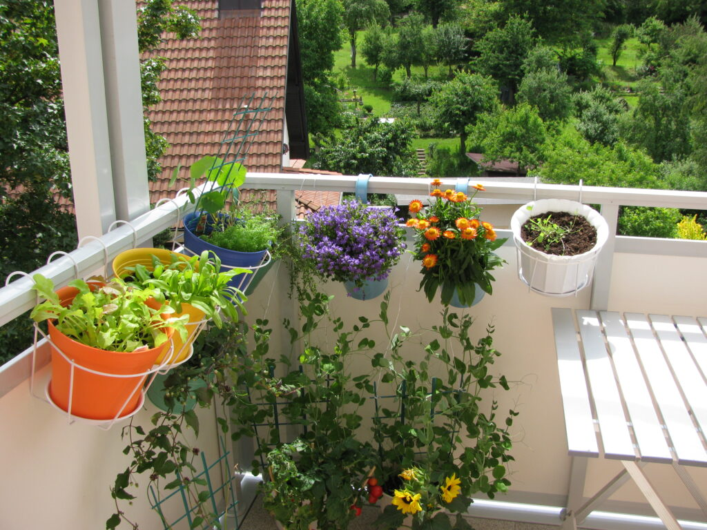 Balcony with flowers and vegetables in flowerpots