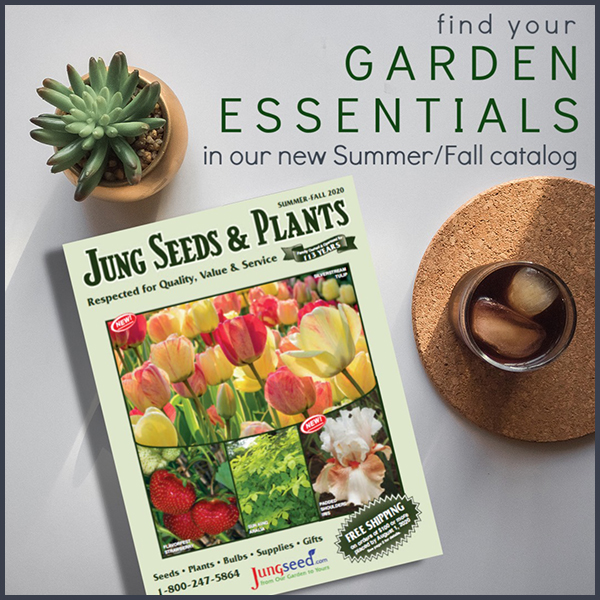 A picture of the Jung Seed summer/fall catalog