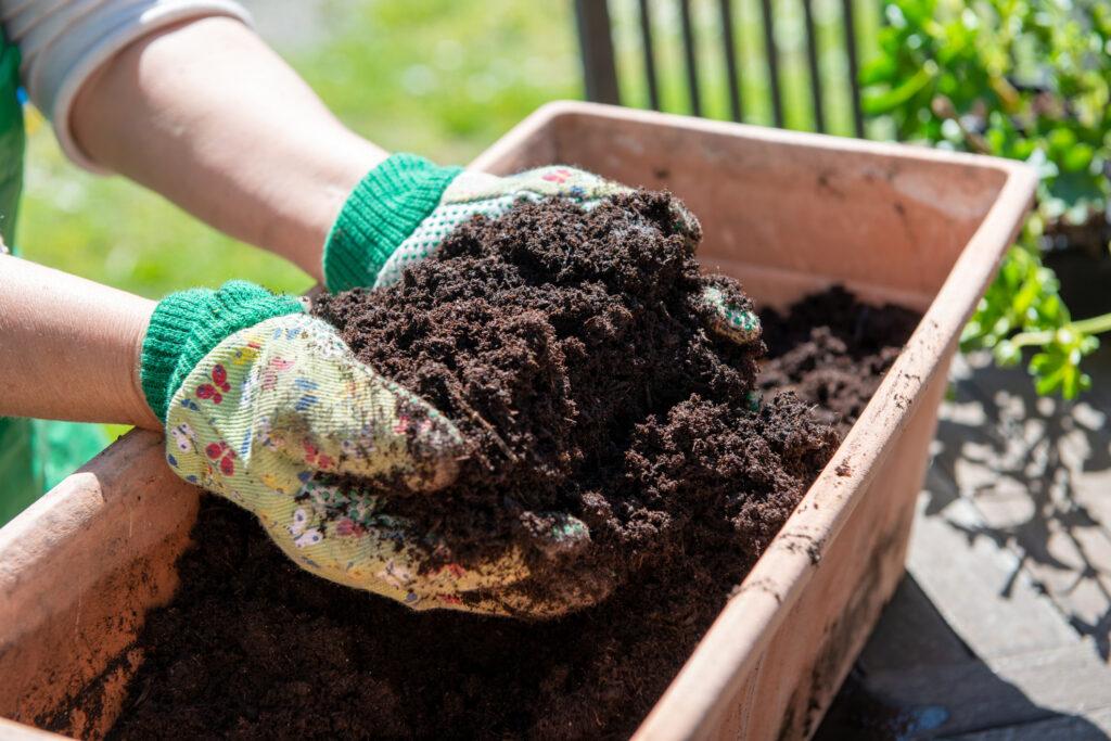 Mano de mujer con un puñado de tierra en el jardín.
