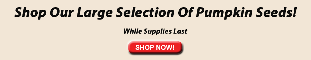 Shop Our Large Selection of Pumpkin Seeds banner ad