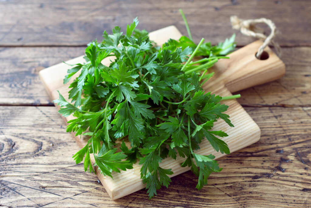 Bunch of fresh organic parsley on a cutting board on a wooden table, selective focus, rustic style