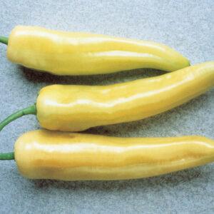 Hungarian Yellow Hot Wax Pepper