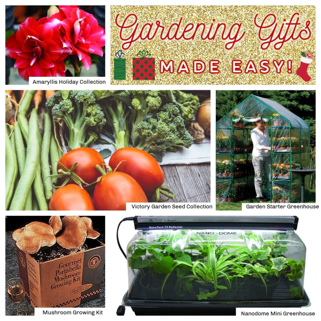 gardening gifts from jung seed co