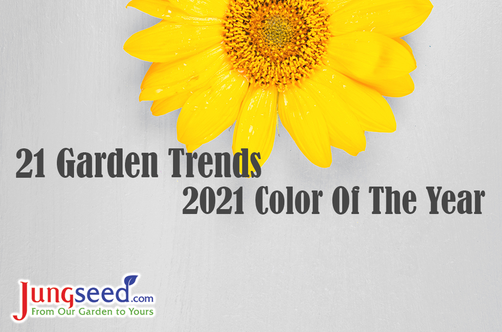 21 Garden Trends: 2021 Color of the Year
