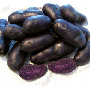 Purple Magic Molly potatoes