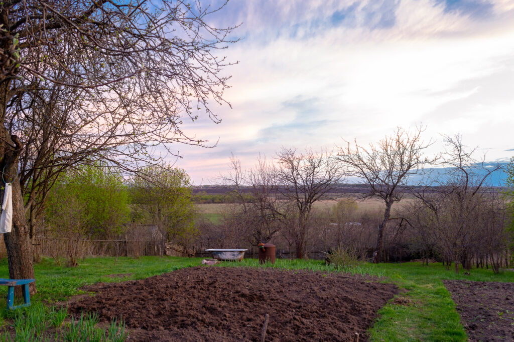 Plowed land, ready for planting vegetables.