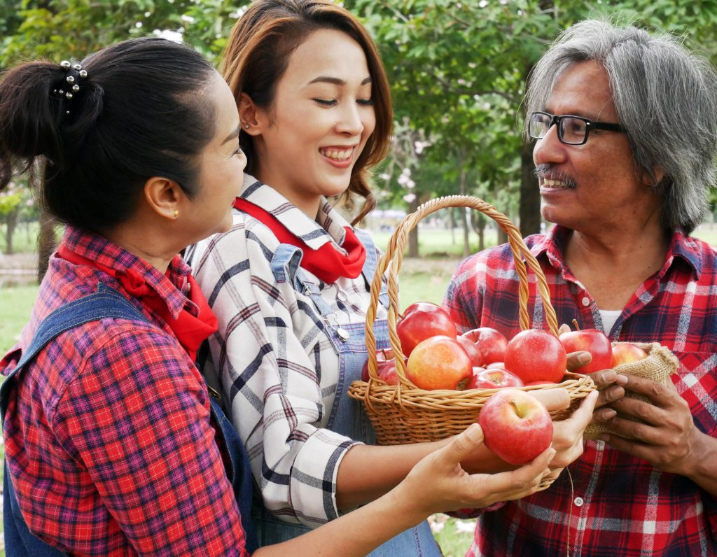 A family of apple farmers with a basket of apples fresh from the apple tree