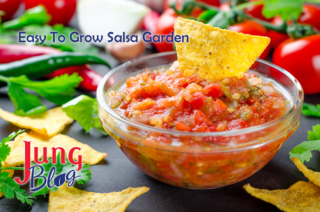 Traditional mexican homemade salsa sauce with ingredients, tomatoes, pepper, cilantro, chips on a dark black stone table. Close-up, horizontal image