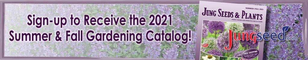 Sign up for the summer/fall gardening catalog
