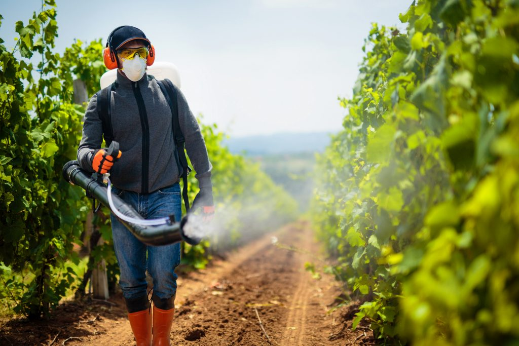 Agriculture worker. Young farmer spraying pesticides. Taking care about vineyard.