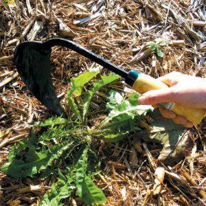 A garden tool for weeding