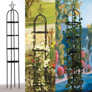 Decorate iron tall slender for growing plants on