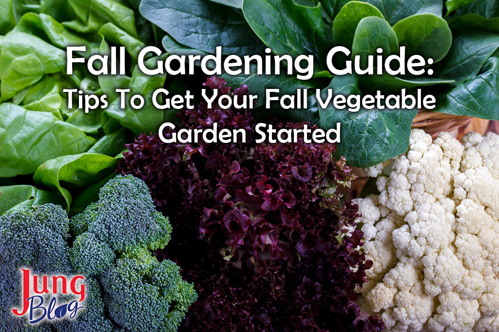 Fall Gardening Guide: Tips To Get Your Fall Vegetable Garden Started