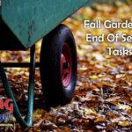 Fall Gardening: End Of Season Tasks