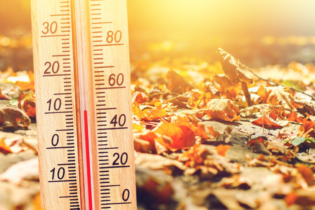 Thermometer in the autumn cold weather in the leaves shows low temperatures