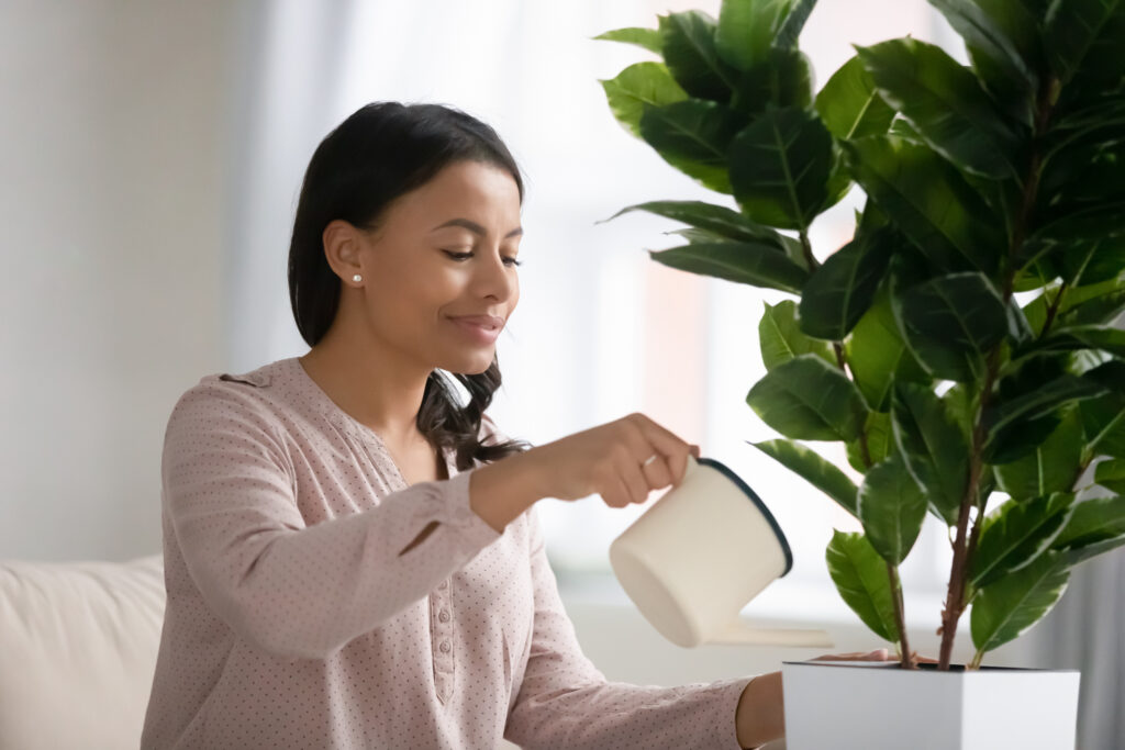 African young woman holding can watering houseplant