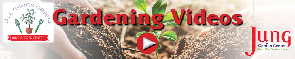 YouTube Banner for the gardening channel All Things Green by Jung Garden Center
